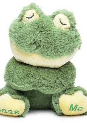 Frog Praying