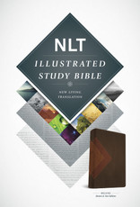 Tyndale NLT illustrated study bible brown tan