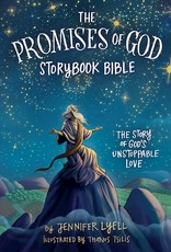 The Promises Of God Bible Storybook