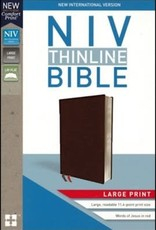 Zondervan NIV Thinline Bible Large Print Burgundy, Bonded Leather, Indexed