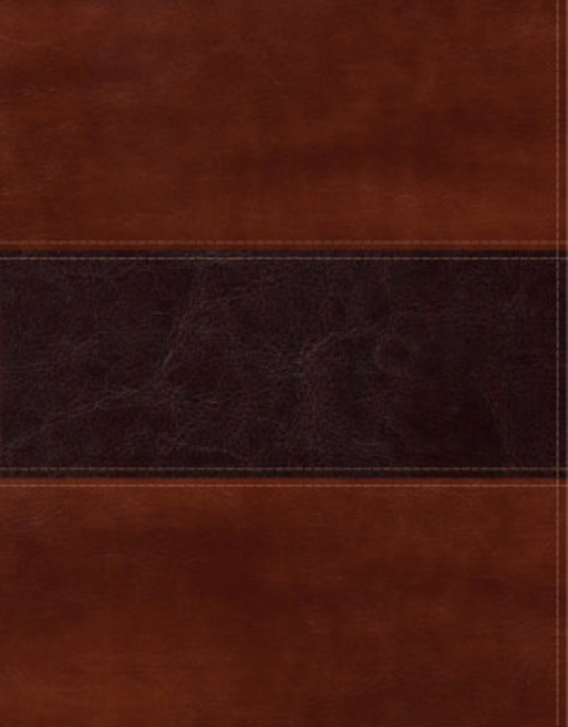 B & H Publishing Span-RVR 1960 Fisher Of Men Bible-Mahogany LeatherTouch (Biblia Del Pescador)