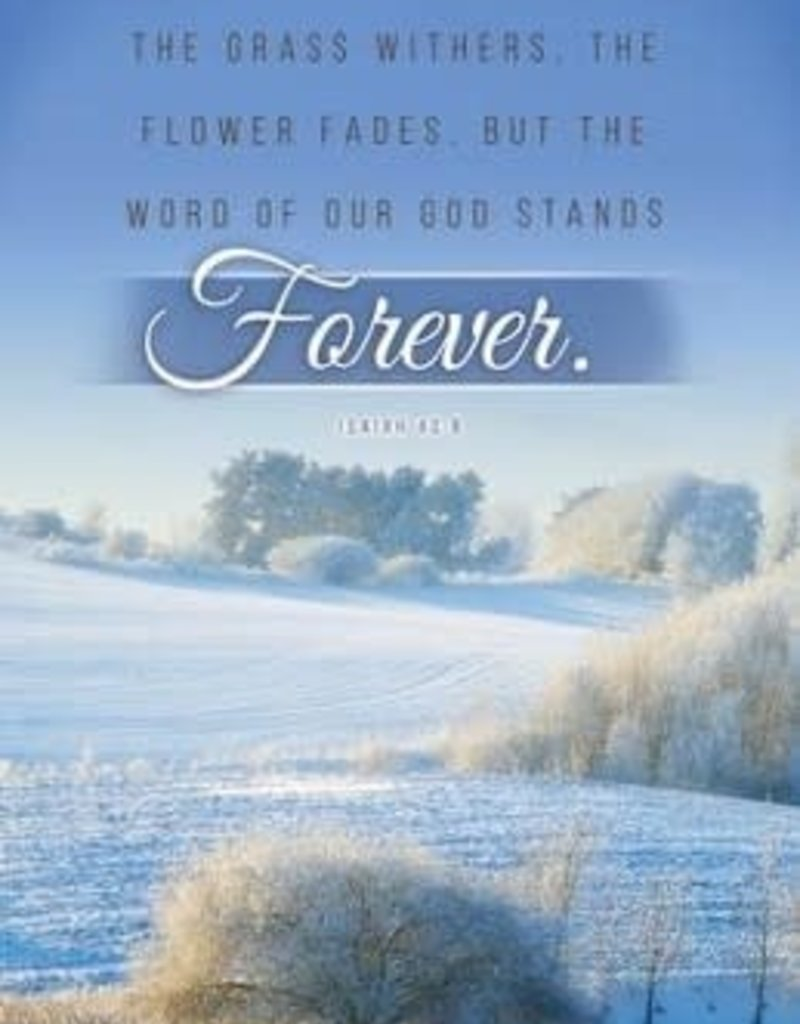 The Word Stands Forever (Isaiah 40:8) Bulletins, 100