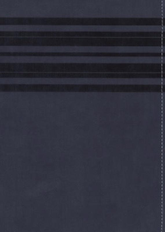 Zondervan NIrV Large Print Holy Bible - Slate Blue DuoTone (9780310743927)