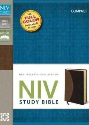 Zondervan NIV Study Bible, Compact, Imitation Leather, Tan Burgundy