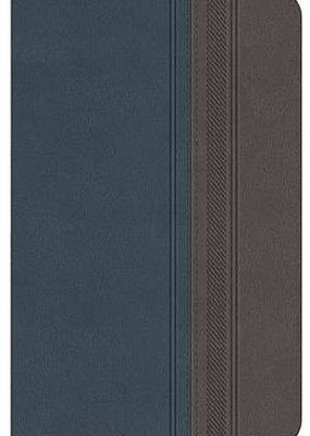 Span-RVR 1960 Special Edition Classic Bible-Blue/Grey LeatherSoft