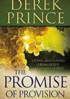 Baker Publishing Group Promise Of Provision