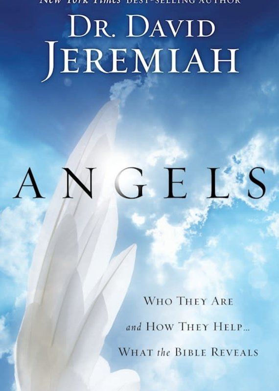 Multnomah Angels : Who They Are And How They Help