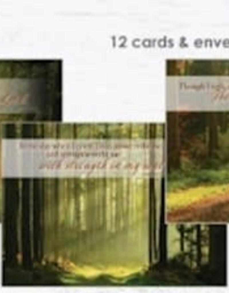 Boxed Cards Sympathy