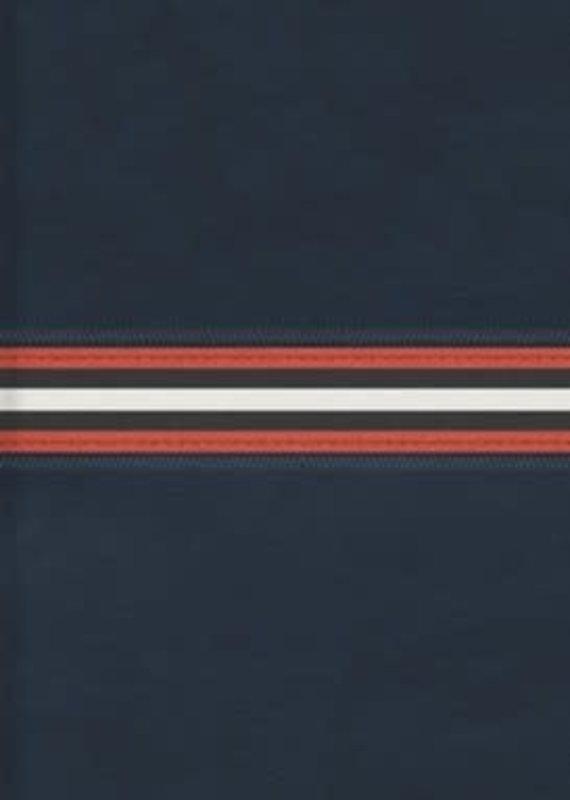 Spanish RVR 1960 Letra Grande