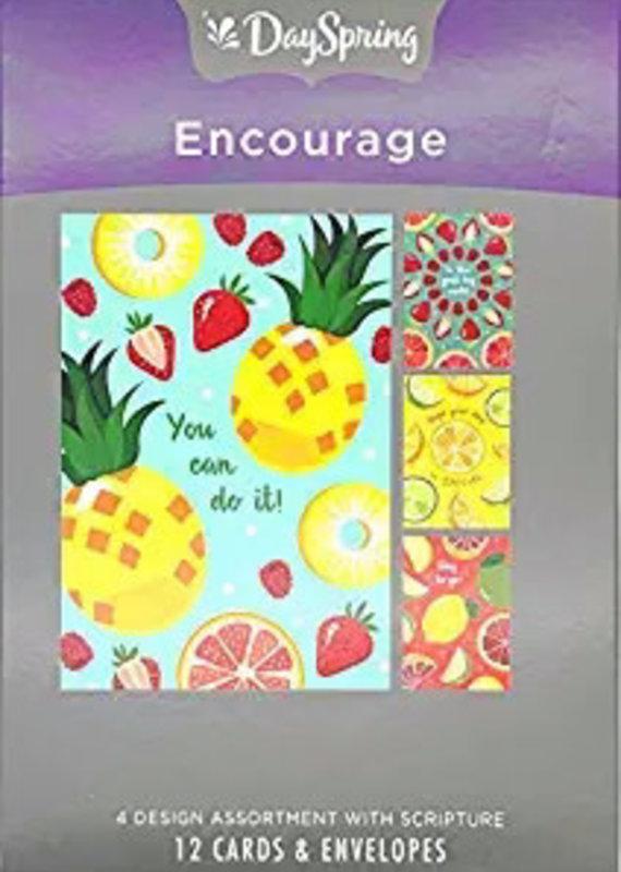 Card-Boxed-Encouragement-Citrus Illustrations (Box Of 12)