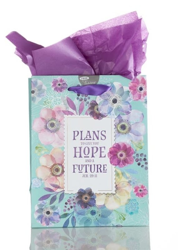 Gift Bag Plans