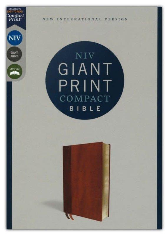 NIV Compact Bible