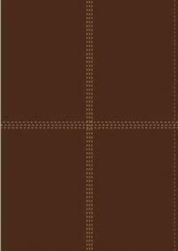 Spanish Bilingual Bible NIV/RV60 with index
