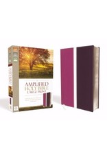 Amplified Bible Large Print 9780310951728