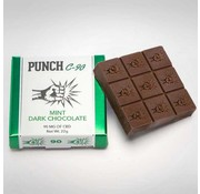 Punch Edibles Punch C-90 mg Chocolate Bars - Mint Dark Chocolate