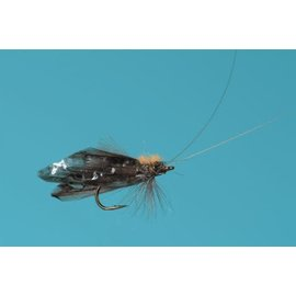 Stalcup's Caddis Adult - Sz 16