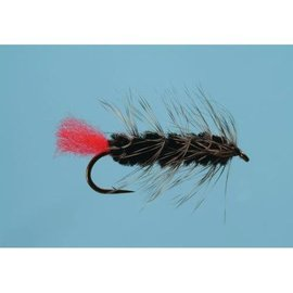 Wooly Worm - Sz 8