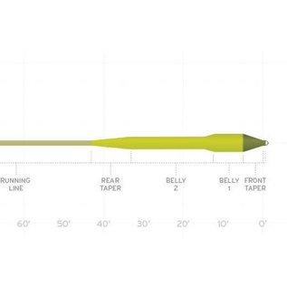 SA Amplitude Smooth Titan Long