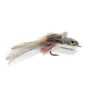 Swimming Baitfish-Shad