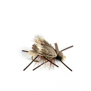 Army Ant-Size 8