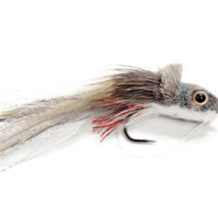 Swimming Baitfish-Shad