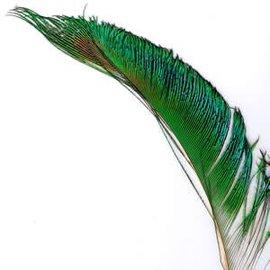 Natural Peacock Swords