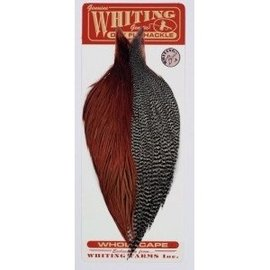 Whiting Pro Grade Combo Capes Grizzly/Brown