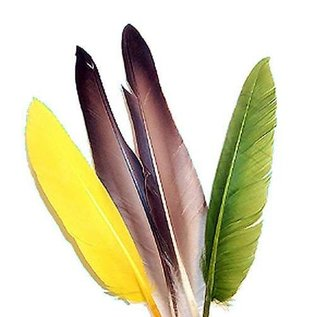Duck Quill - 2 Pair