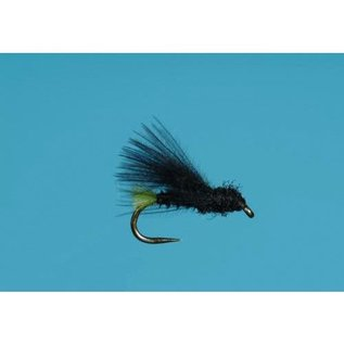 Fertile Caddis