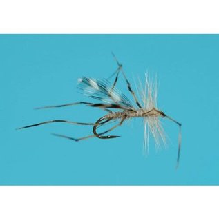 Cranefly Dry