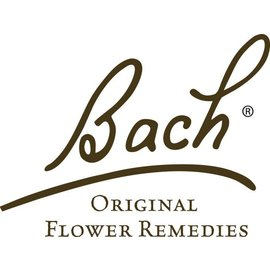 Bach Willow 20mL