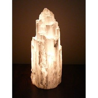 Desert Rose of Africa Carved Selenite Salt Lamp