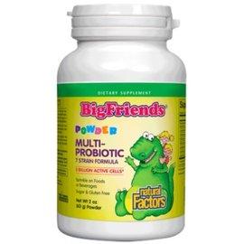 Big Friends Big Friends Multi-Probiotic Powder 2oz./OZ