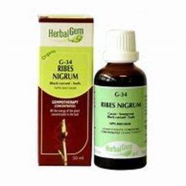 Herbal Gem Ribes nigrum 50ml