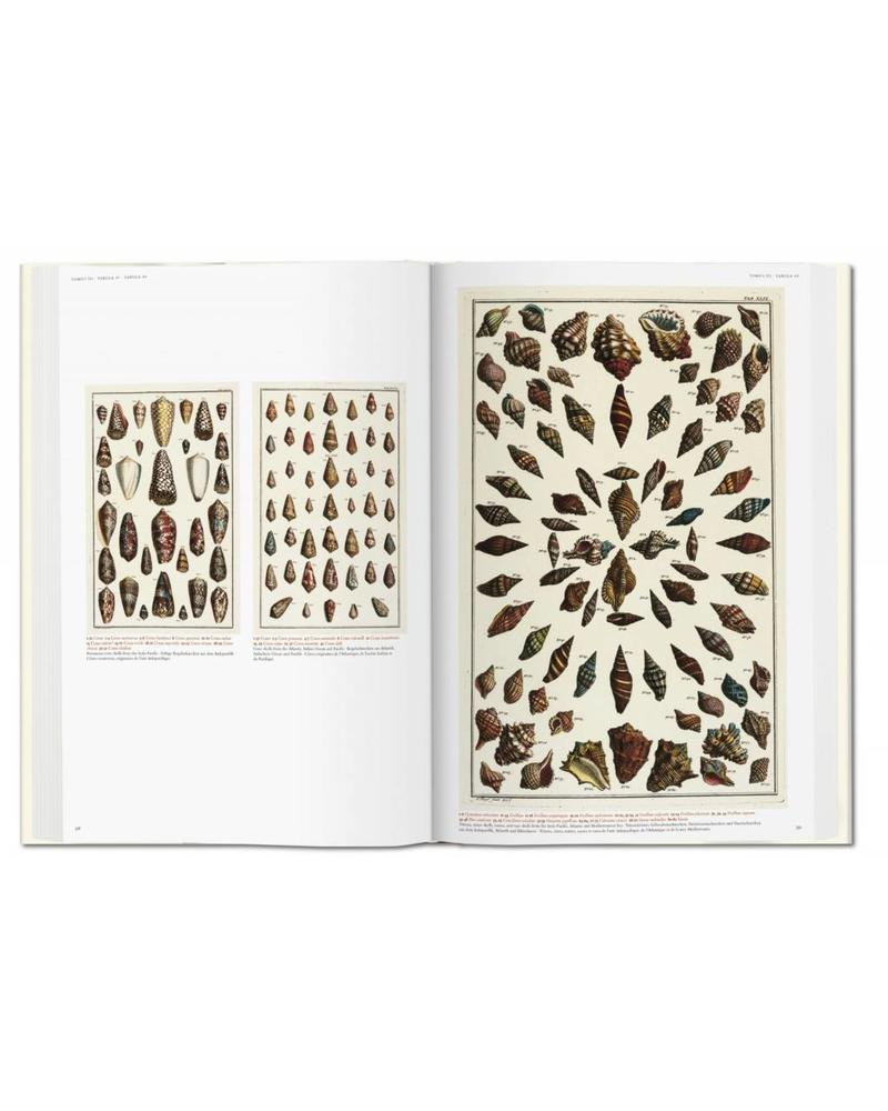 Albertus Seba: Cabinet of Natural Curiosities (Oversized Coffee Table Book)