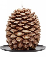 Tin Roof Pinecone Candle-Cinnamon Beignet (Small)