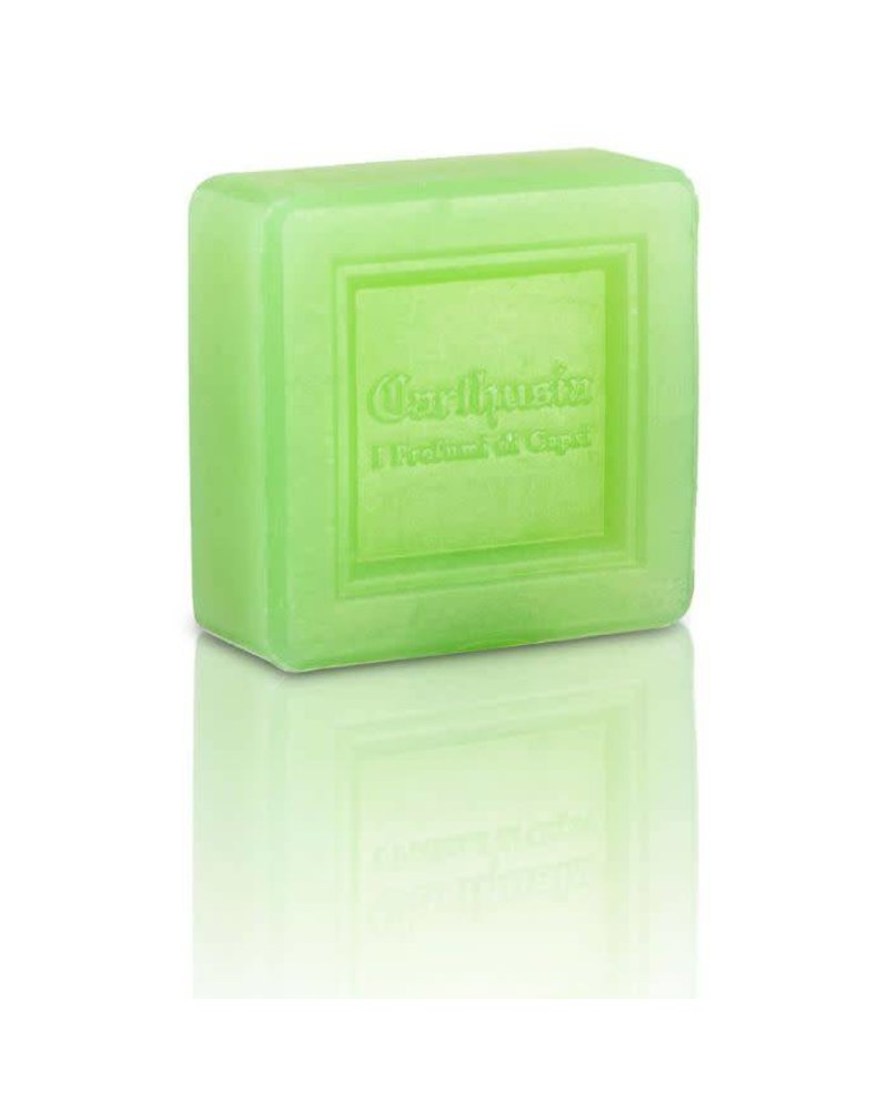 Aloe 100gr Soap