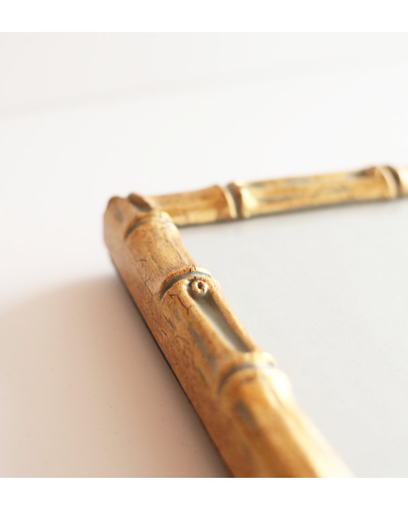 5 x 7 Gold Bamboo Frame