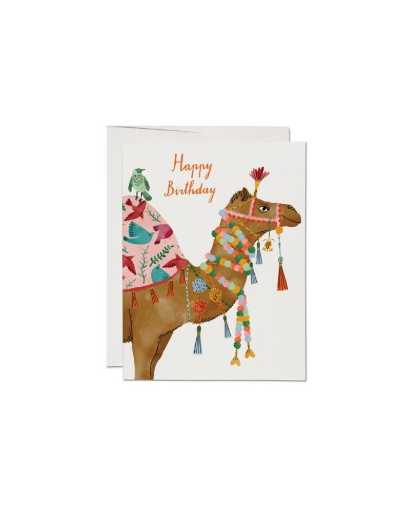 Happy Birthday, Camel Greeting Card