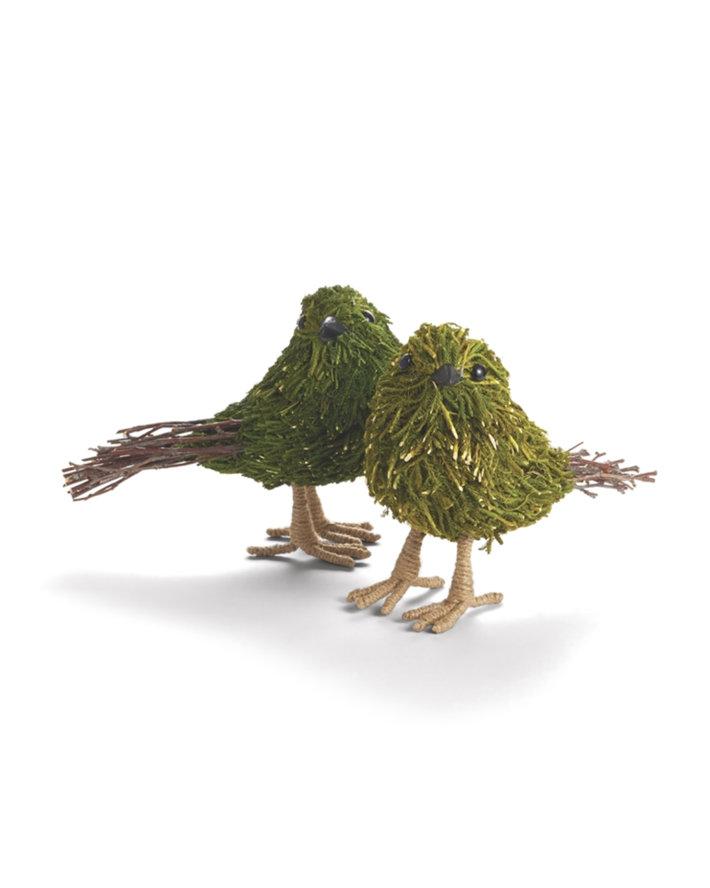 Moss and Twig Bird