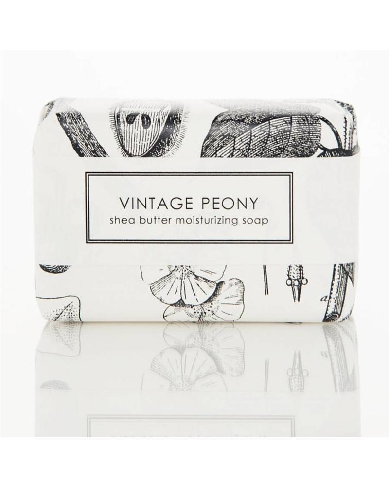 Vintage Peony (6 oz)
