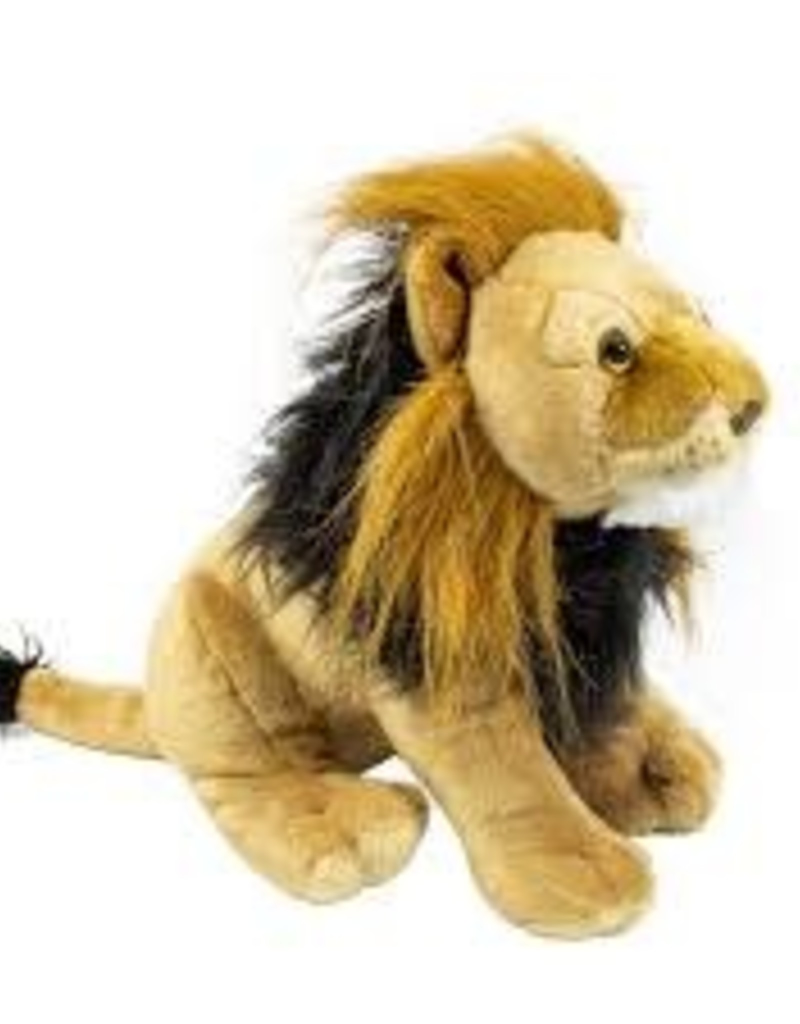 Lion- wild republic