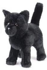 Salem Black Cat
