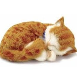 Perfect Petzzz Orange Tabby Cat (Mini)