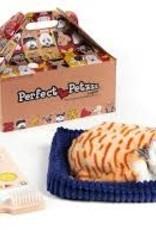 Perfect Petzzz- orange Tabby cat