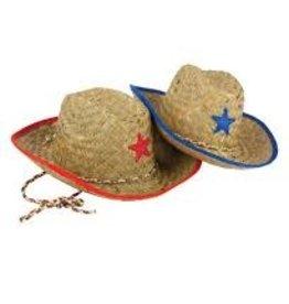 Children's Cowboy Hat