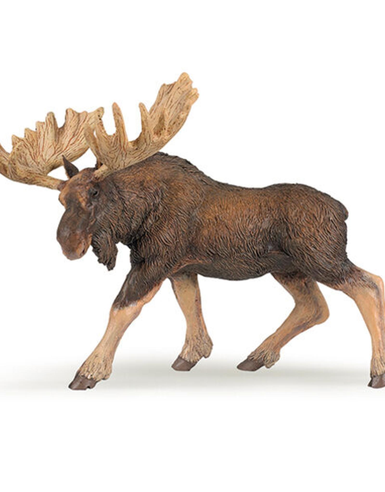Papo Moose
