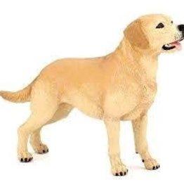 Papo Labrador