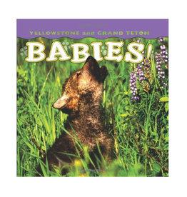 Yellowstone and Grand Teton Babies - Board Book