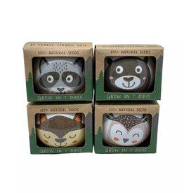 Wild Adventure Ceramic Growing Kits (Asst.)